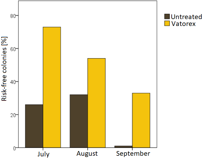 Figure 3: Proportion of bee colonies that can be classified as risk-free according to the guidelines of the bee health service between the end of July and the end of September. One third of the Vatorex-treated colonies showed risk-free varroa infestation levels until autumn, whereas in the untreated control colonies all colonies exceeded this threshold.